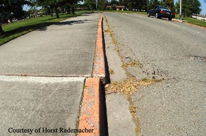 Hayward fault creep